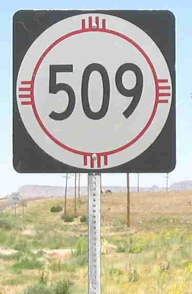 NM-509
